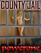 COUNTY JAIL BY POWERONE